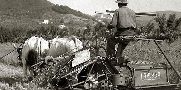13-recupero-macchine-agricole-900x300