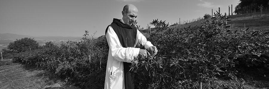 architetto-monaco