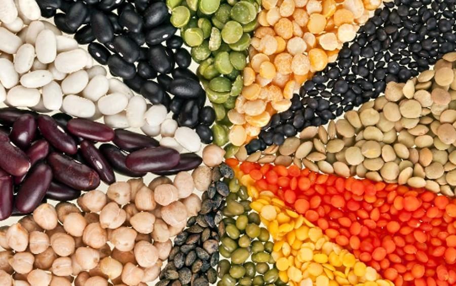 legumi e legami